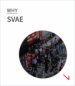 whysvae